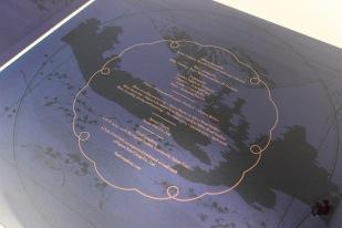 symp-vinyls-4
